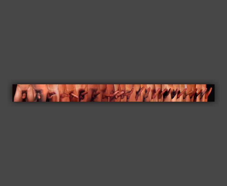 Homo Erectus Linear