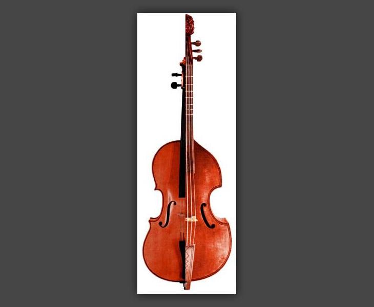 Bass Violincello