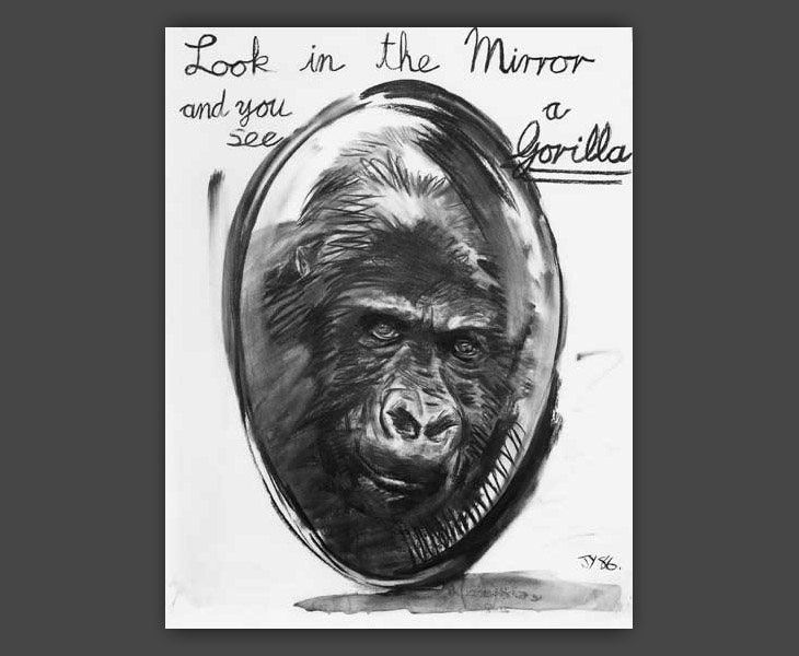 Look in the Mirror and See a Gorilla