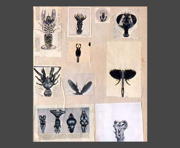Scrapbook 1  [1968]