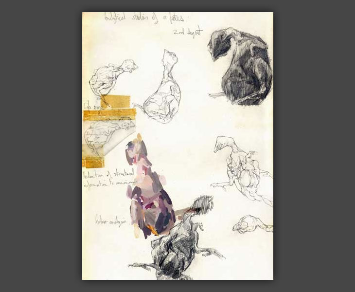 Studies of a Dead Chick  [1966]